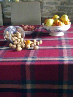 Tartan on the table. Photo by Barbara Mugnai