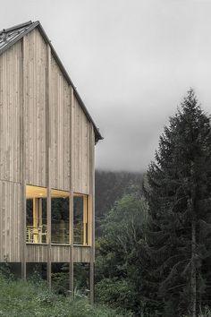 Haus am Stürcherwald / Bernardo Bader Architekten, © Gustav Willeit Guworld