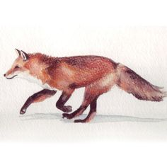 Running Red Fox Illustration by HomemadeHeartland on Etsy