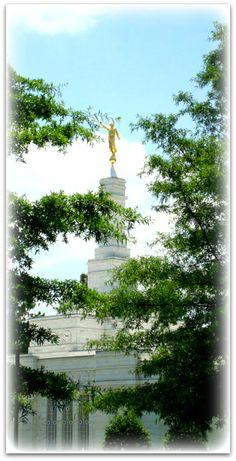 Columbia South Carolina Temple #LDS #Mormon    Remeber to also check out: MormonFavorites.com
