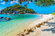 Koh Nangyuan Island is one of the most unique beaches anywhere in the world and can be visited by ferry or longtail boat when when staying Koh Tao