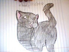 The winner is Star. You get to host the next competition. Warrior Cat Drawings, Warrior Cats, Love Warriors, Competition, Emerald, Congratulations, Stars, Sterne, Emeralds