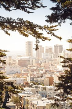 8 ( 1) Reasons to Fall Back in Love with SF This Year