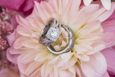 Photo by Lisa. #MinneapolisWeddingPhotographers #WeddingPhotography #WeddingRings #Sparkle #Groom #Bride
