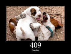 409 Conflict