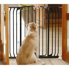 Tall and Wide Indoor Metal Dog Gate with Door-Bindaboo – OfficialDogHouse