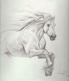 Title: Petar Meseldzija: majestic horse study Artist: Petar Meseldzija (Penciller) Media Type: Pencil Art Type: Interior Page For Sale Status: NFS Views: 1,013