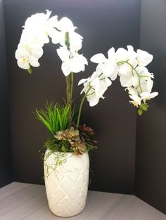 #stackedandco Artificial white phaleanopsis orchids with vanilla grass and assorted succulents with moss in our tall, cream vase