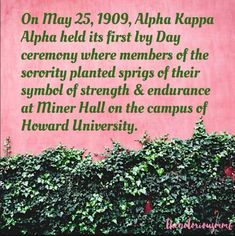 First Ivy Day ceremony Aka Sorority Gifts, Alpha Kappa Alpha Sorority, Sorority Life, Disney Couture Jewelry, Founders Day, Pink Apple, I Saw The Light, Alpha Female, Pretty In Pink