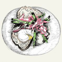 Food illustration - artist study  May van Millingen, How to Draw Food, Artist Study Resources for Art Students, CAPI ::: Create Art Portfolio Ideas at milliande.com , Inspiration for Art School Portfolio Work, Food, Drawing Food, Sketching, Painting, Art Journal, Journaling, illustration, digital, egg, toast, asparagus