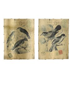 Take a look at this Deco Bird Wall Art Set by Giftcraft on #zulily today!
