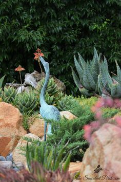 design by Oddo's photo by The Succulent Perch www.thesucculentperch.com