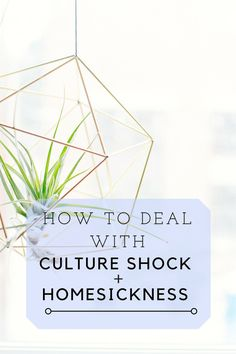 How To Deal With Culture Shock