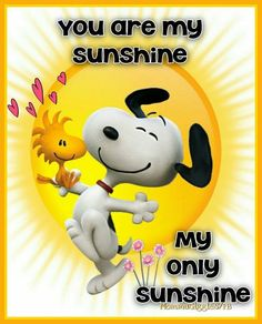 Snoopy and Woodstock with hearts and big yellow sun. Quote, you are my sunshine, my only sunshine! Snoopy Love, Snoopy Et Woodstock, Snoopy The Dog, Happy Snoopy, Snoopy Quotes Love, Snoopy Beagle, Snoopy Family, Peanuts Gang, Peanuts Cartoon