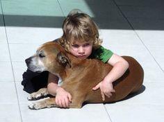 『なぜ犬の寿命は人間より短いのか?』愛犬を亡くした少年の前向きな回答に感動   mofmo