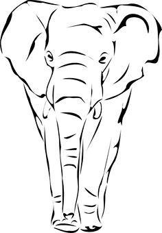 Sketches Of Elephants Face Images & Pictures - Becuo