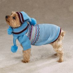 Oh yeah I gotta make him a pom pom scarf and hat. Image detail for -Dog Sweater, Small Dog Sweater, Crochet Dog Sweater, Knitted Dog ...