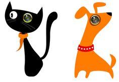 olho magico de gato - Pesquisa Google