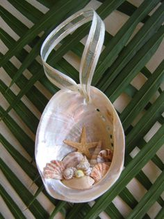 Abalone Shell Ornament, Beach Decor Christmas Ornament, Nautical Ornament, Seashell Ornament