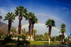 Palm Springs!