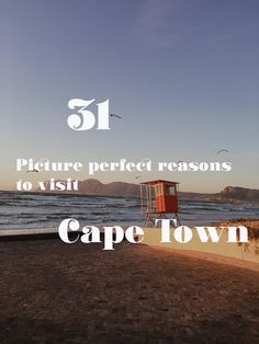 The beaches, the wine, Table Mountain, the penguins, the food, Cape Point - here are my favorite reasons to visit Cape Town. A picture perfect post.