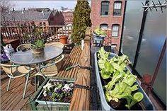 「vegetable garden city」の画像検索結果