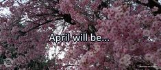 Journal/Writing Prompt for Tuesday, April 5, 2016: April will be…
