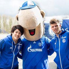 GAZPROM Football - Schalke 04