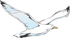 line drawing seagull - Google Search