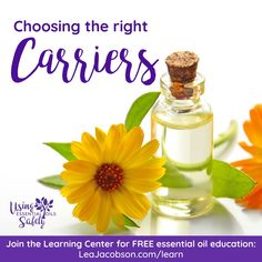 Essential Oil Safety, Essential Oils, Learning Centers, Perfume Bottles, Perfume Bottle, Essential Oil Uses, Essential Oil Blends