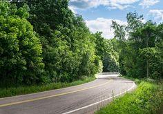 Kesäinen tie - kesä kesäinen mutka mutkainen tie päivä maisema puut puu lehtipuu metsä sininen taivas pilvet pilvi tien varrella asfaltti vihre vehreys poutapäivä piennar pientareet luonnonkukat kukat kukka piennarkasvi maalaismaisema luonto silta heinäkuu keskikesä lämmin