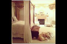 Jessie James Decker [bedroom]