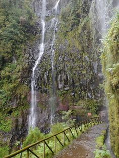Levada walk at Cascata do Risco in Madeira Island, Portugal (by Funchal, Beautiful Islands, Beautiful World, Beautiful Places, Visit Portugal, Portugal Travel, Forest And Wildlife, Diorama, Travel Pictures