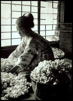 READYING FRESHLY GATHERED COCOONS TO TAKE TO THE SILK FACTORY in OLD JAPAN by Okinawa Soba, via Flickr, ca 1915-23