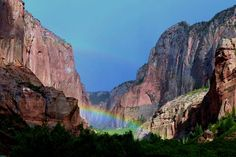 """We're pretty sure """"Somewhere Over the Rainbow"""" refers to Zion National Park. Beautiful Sites, Beautiful Places To Visit, Beautiful World, Places To See, National Park Tours, National Parks, Places Around The World, Around The Worlds, Zion Park"""