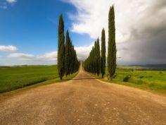 A beautiful road - OLYMPUS DIGITAL CAMERA