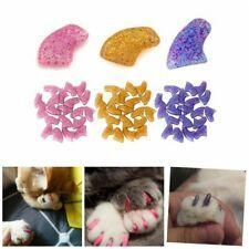 20Pcs Soft Pet Nail Caps Dog Claw Cat Paw Control Avoid Scratch+Adhesive Glue   eBay Pet Dogs, Dog Cat, Pets, Cat Nail Caps, Soft Nails, Cat Behavior, Cat Colors, Cat Paws, Claws