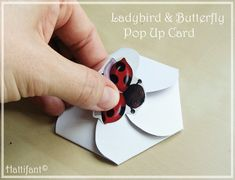 Hattifant Ladybird & Butterfly Pop Up Card Opening