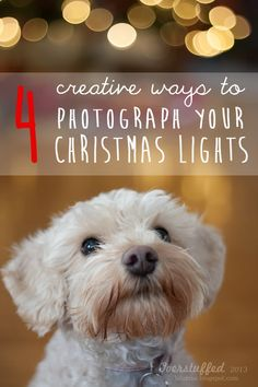 Four Creative Ways to Photograph Your Christmas Lights | Overstuffed