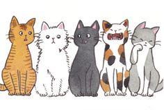 Gif #cat