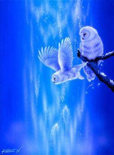 White owls and blue. Art of Kentaro Nishino