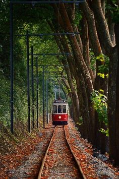 Sintra tram by Paulo Costa-Portugal; Sintra to Praia das Maçãs (Apple Beach) Sintra Portugal, Places To Travel, Places To See, Voyager C'est Vivre, S Bahn, Train Pictures, Portugal Travel, Train Tracks, Abandoned Places