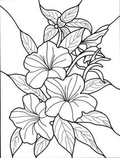 Exotic Flower Coloring Pages | Hawaiian Flower colouring pages (page 2) by chasity