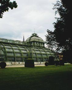 #Vienna #wien #travel #traveling #city #trees #building #schönbrunn #austriatoday