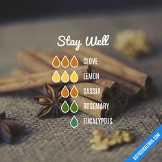 The ultimate essential oil blend software! Create your aromatherapy blends or search through our extensive list. Easily find what blends you can make based on the oils you have. Essential Oils For Nausea, Essential Oils Online, Ginger Essential Oil, Essential Oil Uses, Essential Oil Diffuser Blends, Aromatherapy Diffuser, Diffuser Recipes, Belleza Natural, Chai