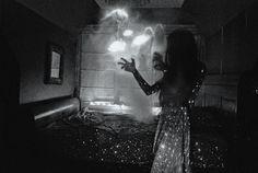 Sofia Ajram Photography