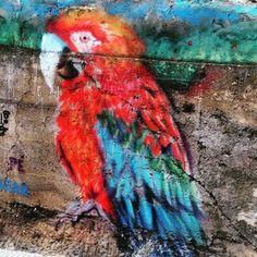 Graffitis nos muros de BH: confira fotos enviadas pelos leitores