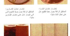 انحلال المواد الغذائية بفعل الإنزيمات البكتيرية Catabolism Of Food By Bacterial Enzymes مدونة التفوق Arabic Calligraphy Calligraphy