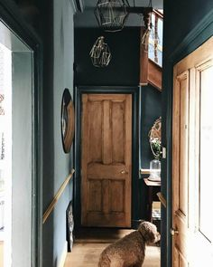 Farrow and ball inchyra blue hallway; Dark Hallway, Hallway Ideas Entrance Narrow, Modern Hallway, Upstairs Hallway, Entry Hallway, Dark Interiors, Colorful Interiors, Farrow And Ball Inchyra Blue, Hallway Paint Colors
