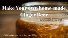 ginger beer Probiotic Drinks, Kombucha How To Make, Water Kefir, Vegan Yogurt, Kombucha Tea, Ginger Beer, Tempeh, Own Home, Organic
